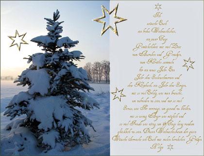 Frohe Weihnachten 2012 euch allen