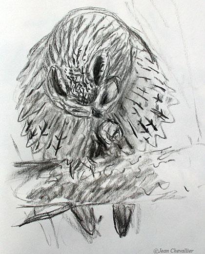 Moyen-duc  Asio otus , dessin Jean Chevallier
