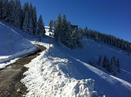 Der erste Schnee 22.10. 2010