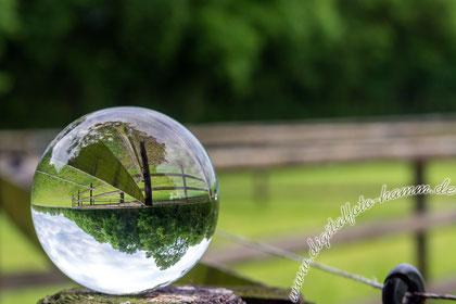 Kugel, Glaskugel, Foto, Fotografie, Bild, Digitalfoto