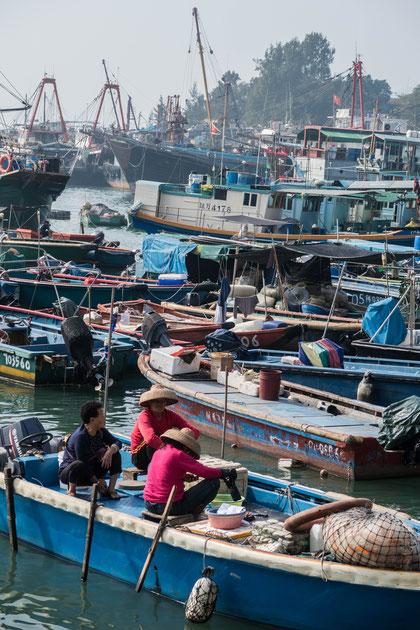 香港 長州島 漁港