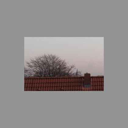 - die Spitze des siebten Turmes, noch knapp über dem Dach -