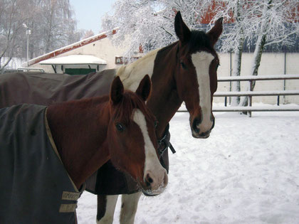 Mona hat Spass im Schnee