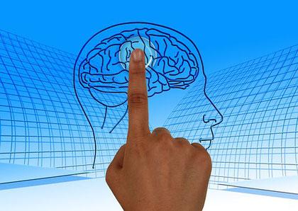Un psychologue du développement chercher à comprendre le fonctionnement de l'élève pour l'aider
