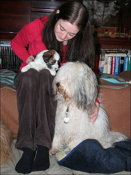 Chins Frauchen mit Baby Milka und Papa Chin
