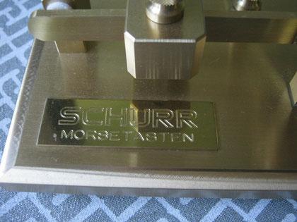 Schurr - bug. particular of plate