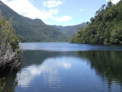 Trekking Parque Nacional Alerce Andino: Laguna Chaiquenes fot. Alonso N. Agradecemos la colaboración de Marcelo Maturana.