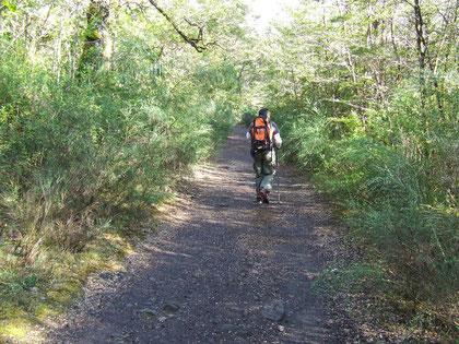 comienzo del trekking desde Petrohue  fot a.núñez