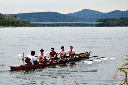 Rudern auf dem Rhein