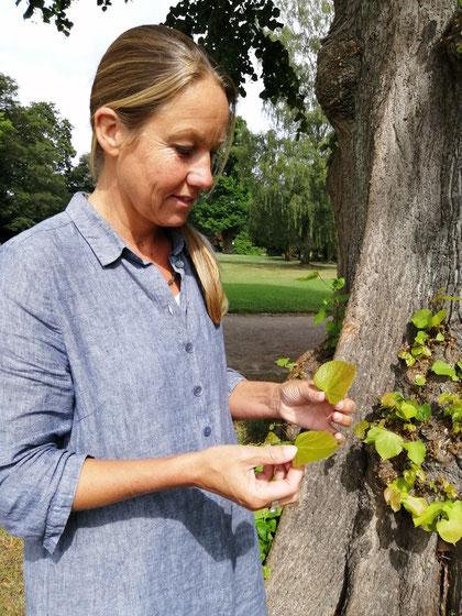 Frau hält Blätter in der Hand