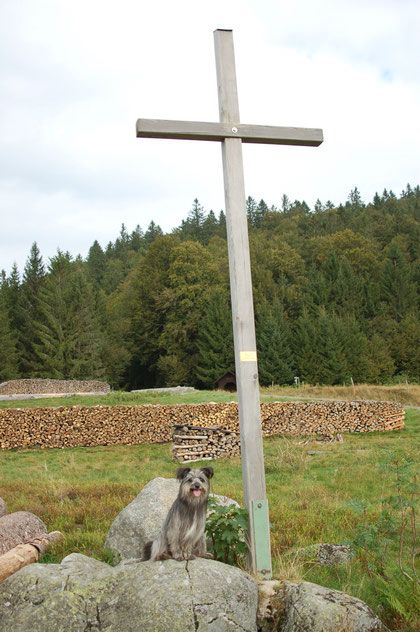 Gipfelkreuz Hofeck