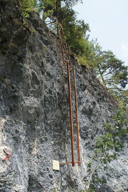 Leiter im BGV-Klettersteig