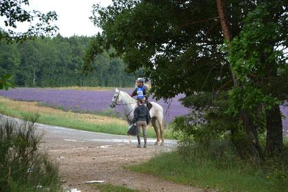 endurance équestre Revest du Bion 2014