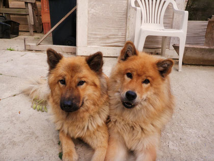 Lunas Mama Aida (re) und Schwester Ban (li) schauen interessiert zu