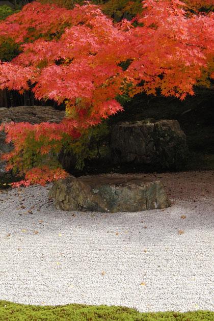 Zen-Garten im Nanzen-ji, Kyoto November 2012