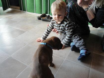 mein jüngstes Enkelkind zu Besuch bei den Welpen!