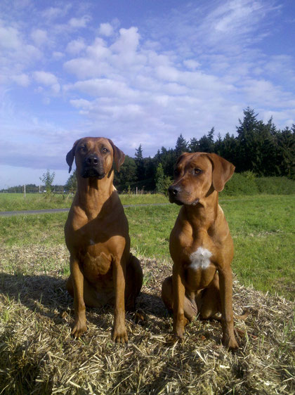 Jali (links) und Halbschwester Kike