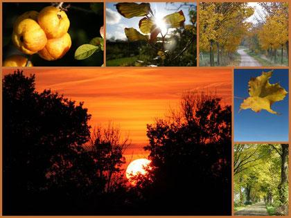 Übersicht Oktoberfotos
