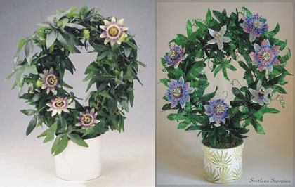 Beaded Passionflower