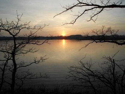 Untergehende Sonne am See