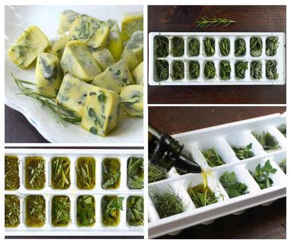 Hiervas frescas en aceite de oliva y al refrigerador.