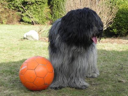 endlich wieder Fußballzeit....