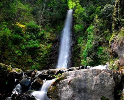 養老の滝  photo by 白鳥保美