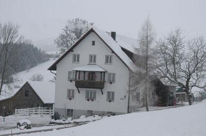 Stockenhöfe Dezember 2010