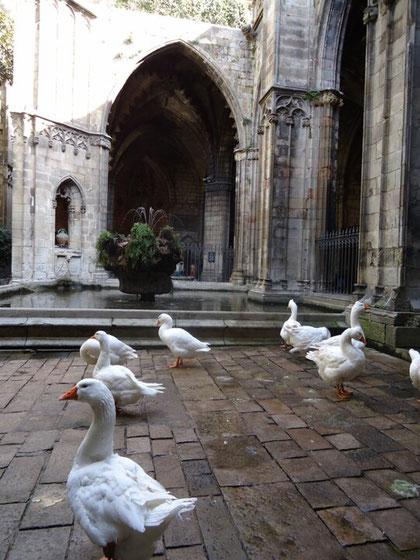 Экскурсия по готическим церквям Барселоны