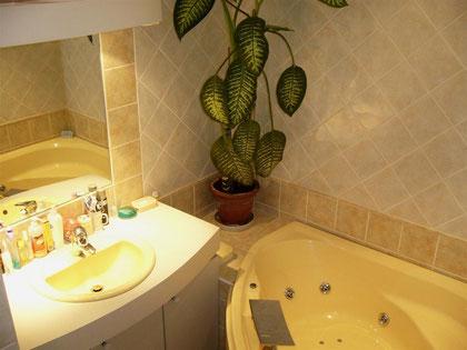 Salle de bains balnéo/WC - Maison d\'hôtes : Le \