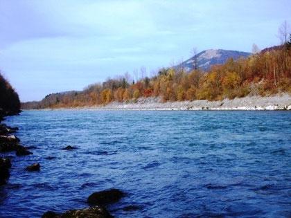 Tolle Herbst- Stimmung am Fangplatz