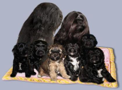 Nan-Chu und Naima mit ihren sechs Na-Na's