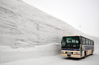 The bus approaching Murodō Terminal