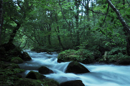 Rapids in Oirasé Gorge