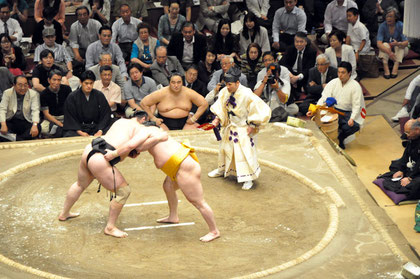 Kotoōshū (lft) vs. Hakuhō (rt)