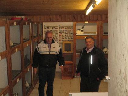 Sepp und Franz im Unteren Teil seiner Vorbildlichen Stallanlage  besetzt mit Riesenschecken schwarz weiß