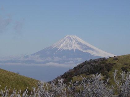 Fuji-Yama, Foto privat