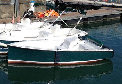 SENSAS - bateau électrique -Ruban vert