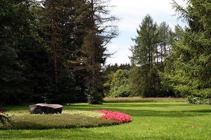 Anonyme Urnenbestattung, Waldfriedhof München