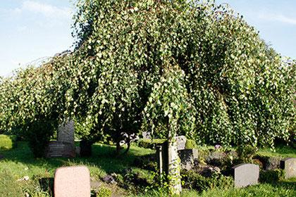 Welche Bedeutung kommt dem Blumenschmuck im Verlauf des Totenrituals zu?