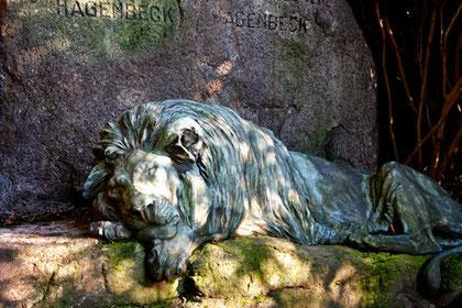 Carl Hagenbeck (1844-1913), Parkfriedhof Ohlsdorf, Hamburg