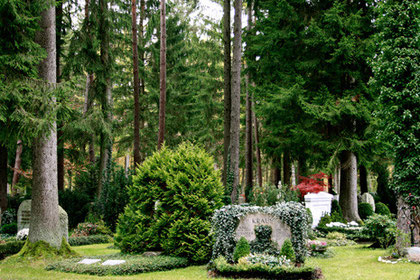 spaziergang auf dem waldfriedhof gr nwald m nchener begr bnisverein e v. Black Bedroom Furniture Sets. Home Design Ideas