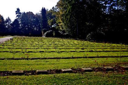 Bombenopfer, Parkfriedhof Ohlsdorf, Hamburg