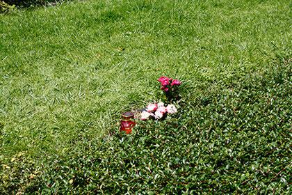 Reihengrab, Waldfriedhof München