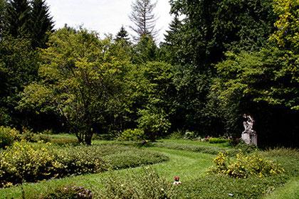 Reihengrabanlage, Waldfriedhof München