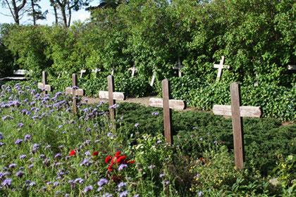 Impression, Friedhof der Heimatlosen auf Amrum