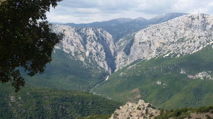 grandiose Berglandschaft zw. Dorgali und Baunei