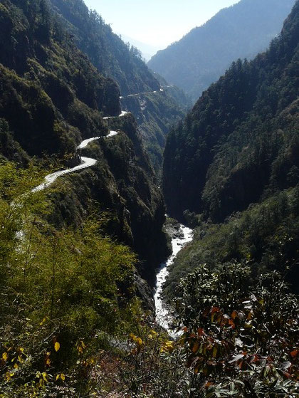 Dans la descente vers le Nepal, la vegetation refait son apparition