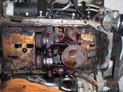 Opel Sintra 2.2 GLS von unten, Ölpumpe rechte Seite