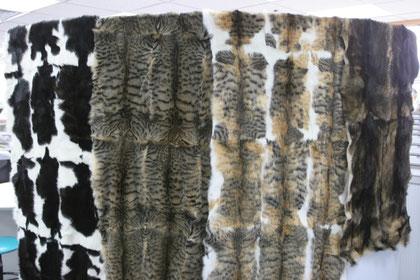 Palette de peaux de chats cousus prête à l'exportation
